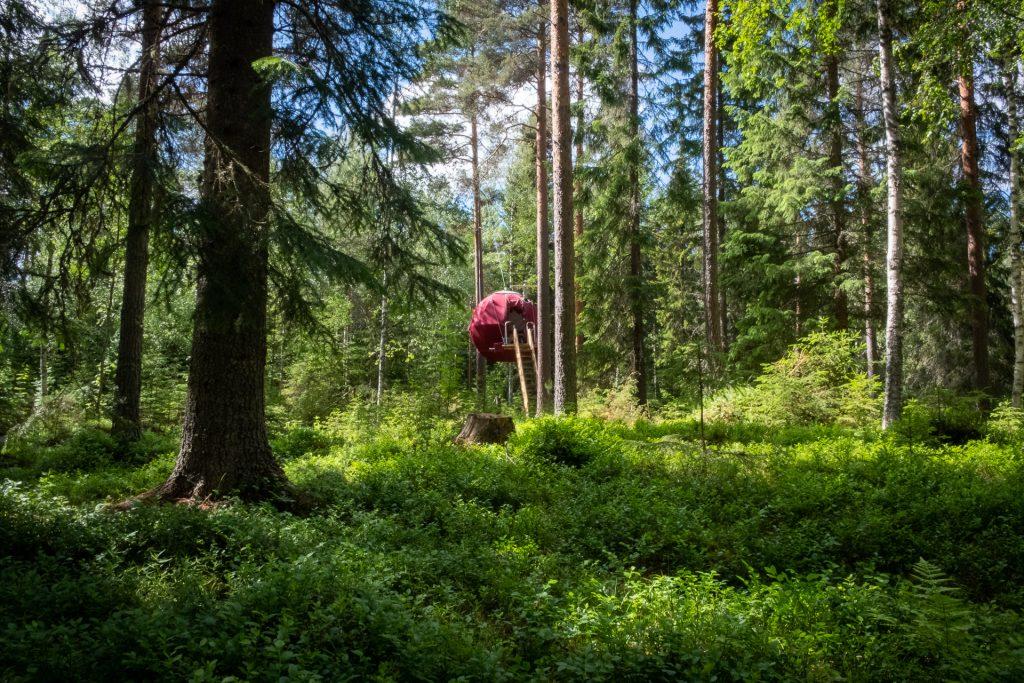 Supermånen hos Näsets Marcusgård Dalarna Sverige