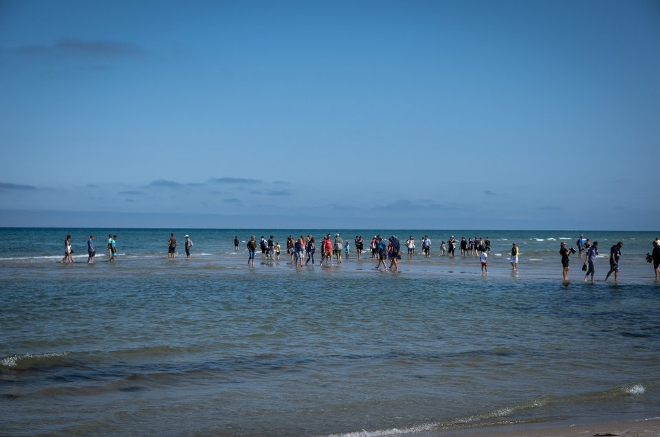 Summer, the salty seas and sand in Skagen
