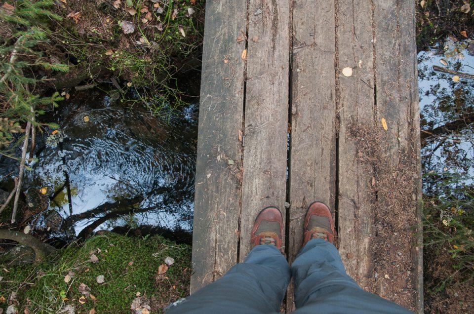 Movatn – flyvrak og lamaer i Nordmarka
