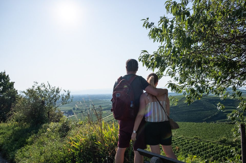 Kaiserstuhl – an abundance of wine in Germany